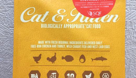 評判の【オリジン】キャット&キトゥン。我が家の猫に食べてもらった感想|納得できるキャットフードを求めて